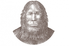 Sasquatch-art