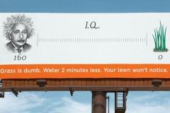 Denver-Water-3
