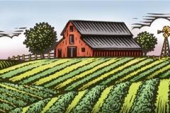 Apio_Farm_Scene-Woodcut