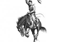 Bronco Cowboy