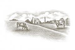 Dairy_Farm_01