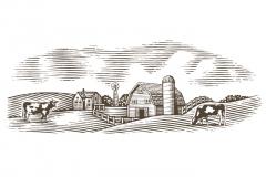 Dairy_Farm_Scene