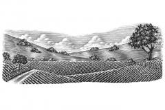 Farm-Landscape-scene-