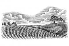 Farm_Pastoral_Scene