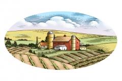 Farm_Scene 2
