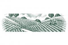 Farm_Tractor-art