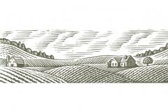 Farm_art_02