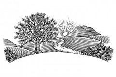 Orchard-Landscape-art-