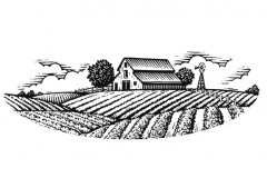 Organic_Barn
