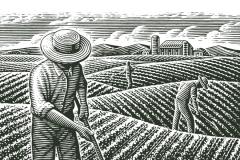 Organic_Farming_Scene