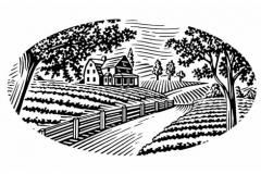 Plantation-Art