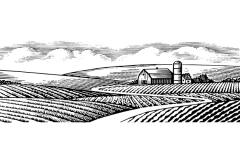 Salterra_Farm