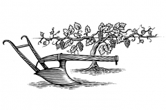 Vine_amp_Plow