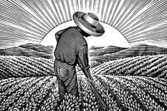 Working_Farmer