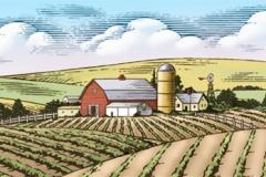 farm_panorama_01