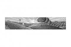 farm_panorama_02