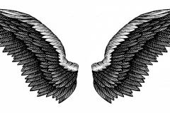 Eagles Wings art