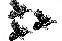 Flying Turkey art 2