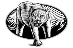 MVC Lions