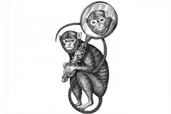 Monkey-a
