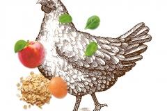 Purina Chicken
