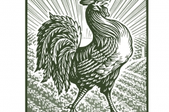 Rooster Icon art