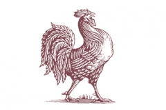 Rooster_icon