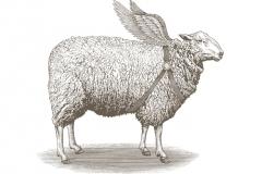 Sheep-art-copy