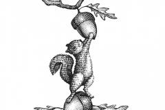 Squirrel art