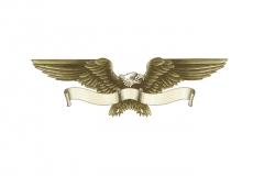 Ten-High_Eagle