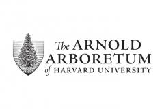 The-Arnold-Arboretum-Logo