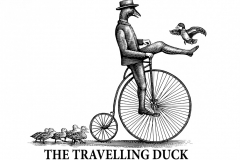 The Travelling Duck