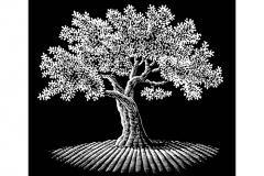 Tree_Woodcut_2