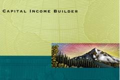 Capital_Income