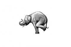Balancing_Elephant-art