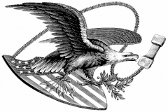 Bald_eagle_Alcatel_-S_Noble