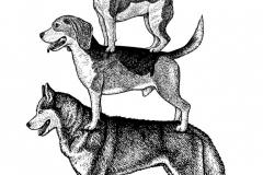 Dog Breads2