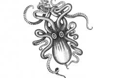 Kraken-art-2