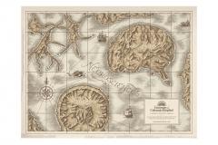 Neurosciences_Map