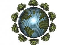 Organic_Globe