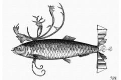 Fishdeer