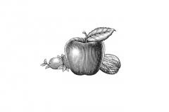 Apple, Walnut, Cranberry