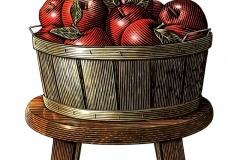 Apples Woodcut