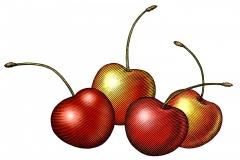 Cherries art