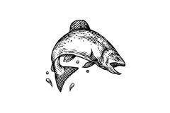 Fish_Woodcut