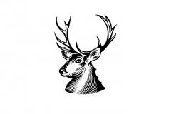 Reindeer-art-2