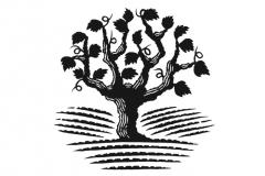 Vine Tree 2
