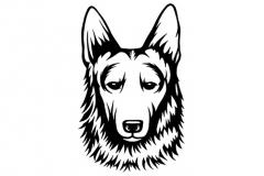 german_shepherd
