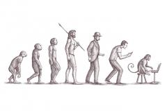 Evolution-art