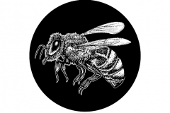 Bee-art-lighter-version-